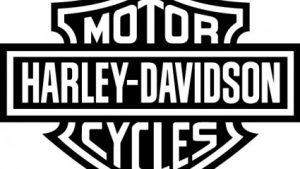 【バイク】XL1200NSの購入時オプションとカスタム